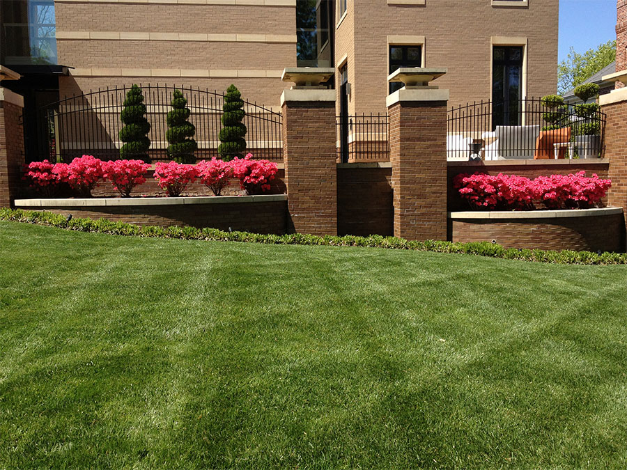 Professional Lawn Care and Turf Services from Outdoor Creative Design in St. Louis, Missouri.