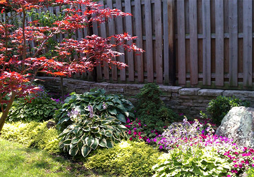 Ornamental Landscaping Design using native and exotic plants from Outdoor Creative Design.